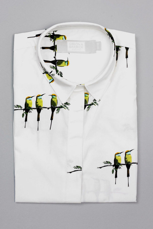 BEE EATER PRINT